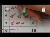Роспись ногтей для начинающих (онлайн обучение) xanora.com.ua